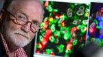 """Image for the Documentary programme """"A Year to Save My Life: George McGavin and Melanoma"""""""