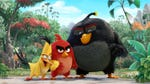"Image for the Film programme ""The Angry Birds Movie"""