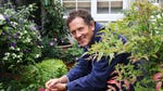 """Image for the Gardening programme """"Big Dreams Small Spaces"""""""