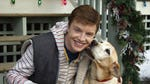 """Image for the Film programme """"A Dog Named Christmas"""""""
