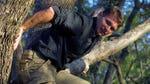 "Image for the Nature programme ""Escape to Chimp Eden"""